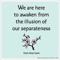 awakening-from-the-illusion-thich-nhat-hanh