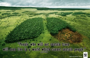 sustain trees