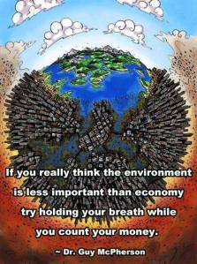 environment more important than economy